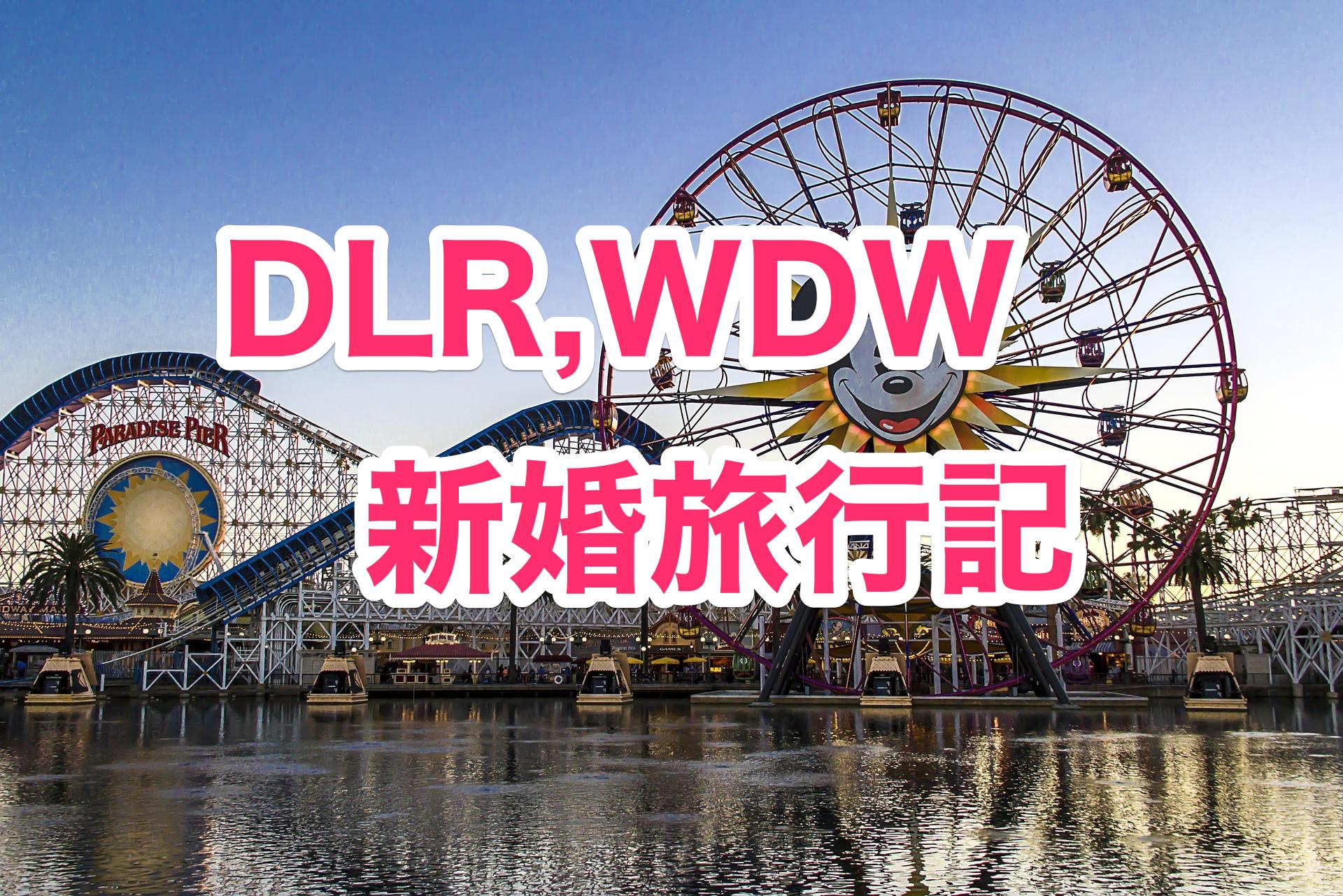 【DLR,WDW】個人手配でアメリカディズニー新婚旅行 〜行き先検討編〜