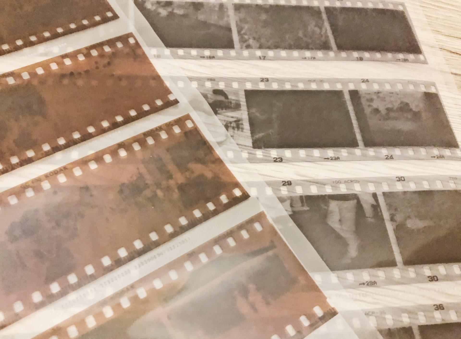 ネガ?ポジ?ISO?フィルムカメラを始めたいけど、どんなフィルムを買えば良いのか分からなかったので種類をまとめてみた。