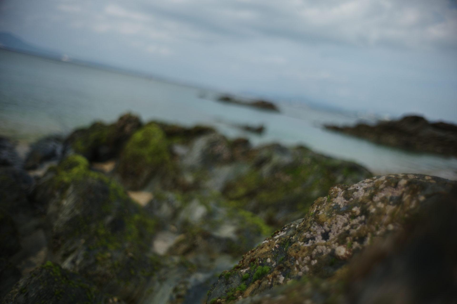 写真の先にあるものを探して。撮り続ける事の難しさに想いを馳せて。